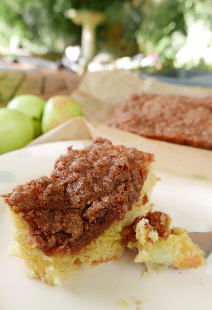 Seasonal Cinnamon Apple Tea Cake